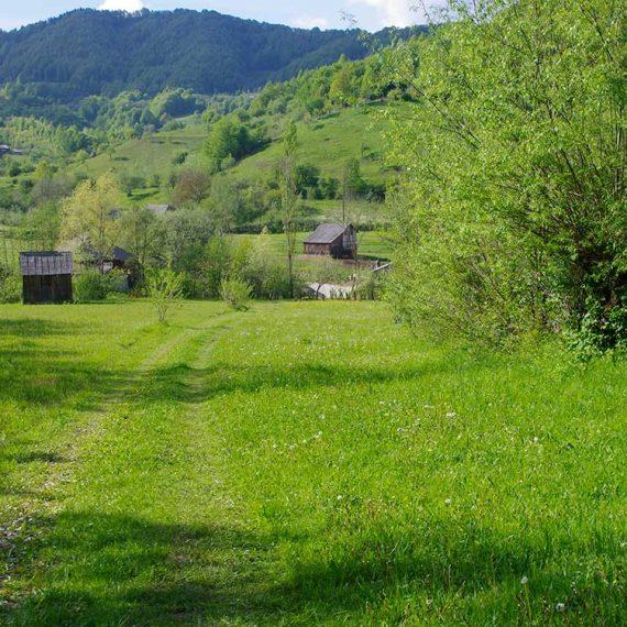 Parcela faneata intravilan, langa drum, Leordina, Maramures, pe Valea Satului