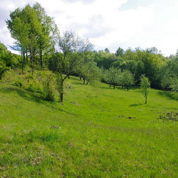 Parcela teren casa, Leordina, Maramures, pe Valea Satului